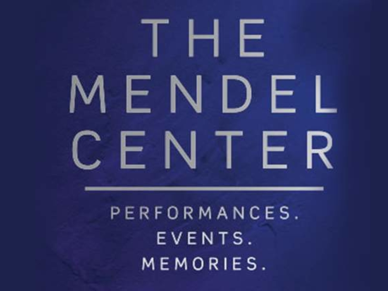 logo for The Mendel Center at the LMC Napeier Ave campus in Benton Harbor